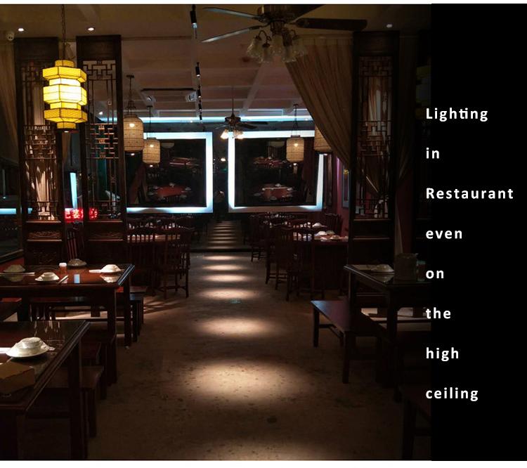 D50 Very Narrow Beam Spotlight 6 Degree 3w Led Track Light For Fine Art Gallery